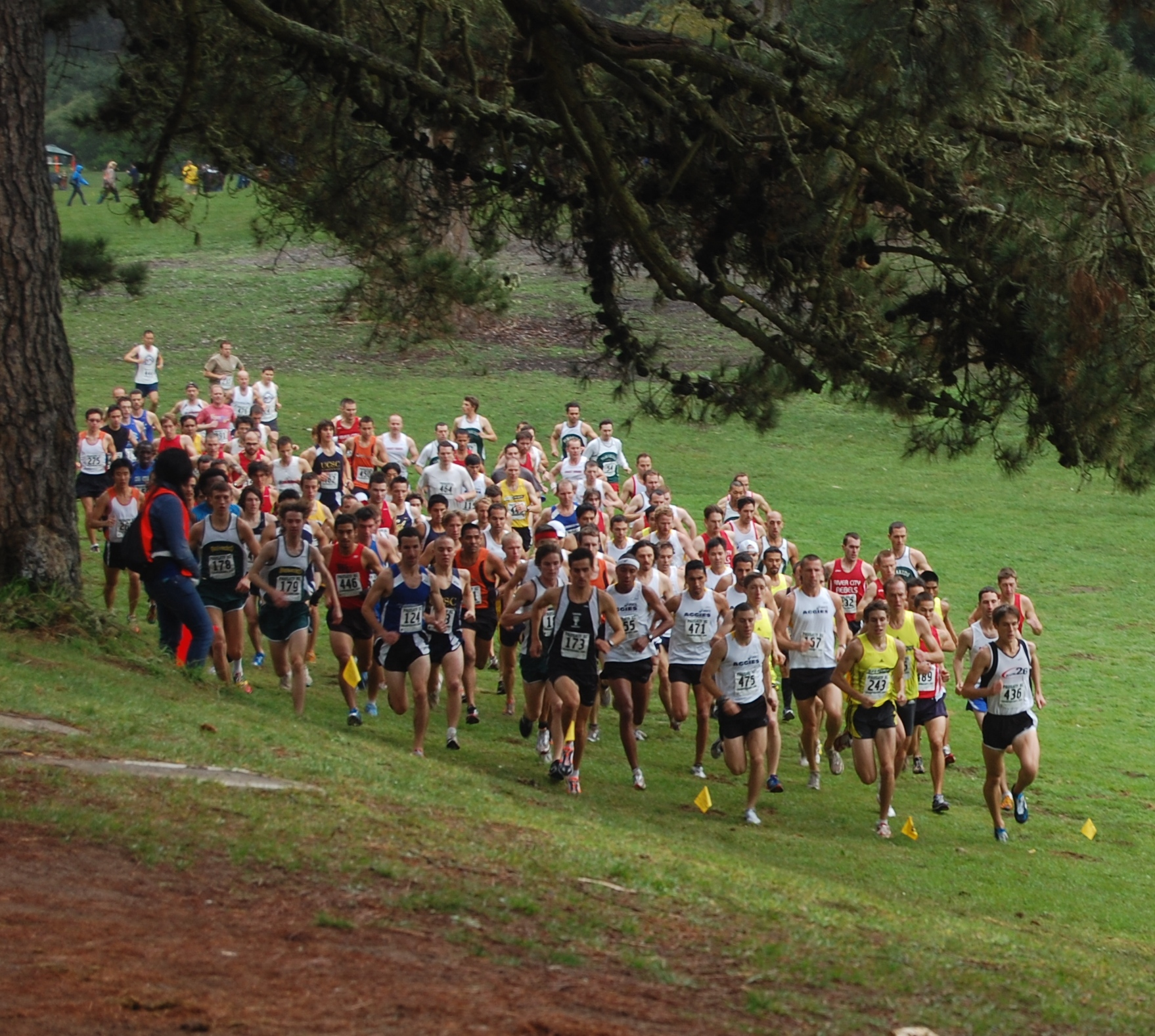 Résultats et photos du cross UNSS de district