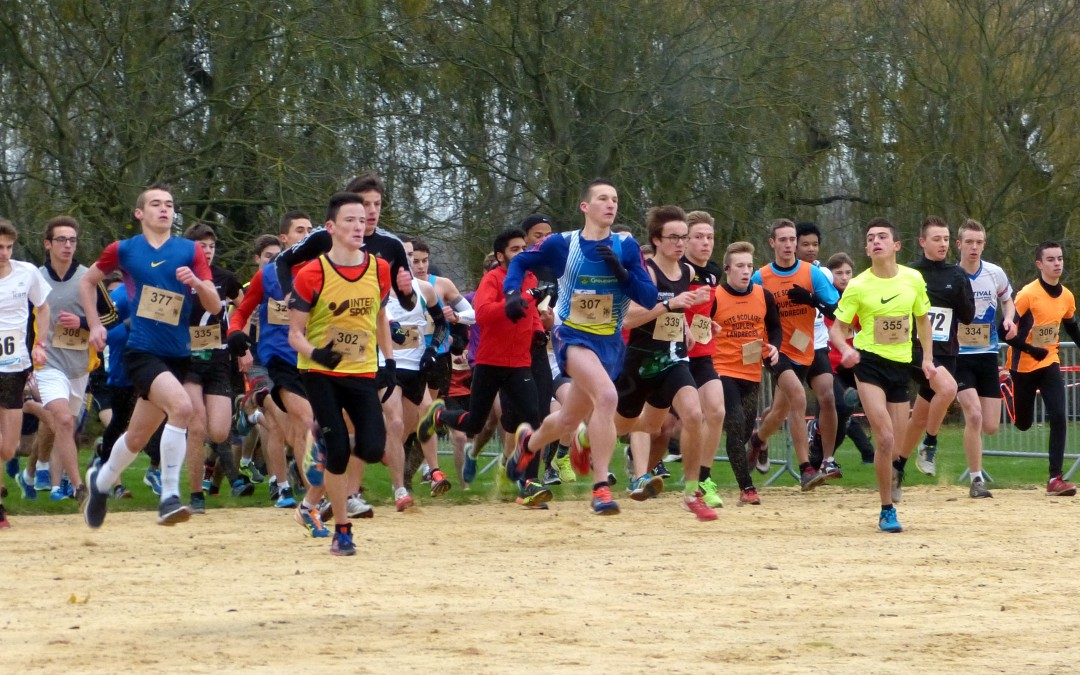 Cross Départemental 2014 : résultats et photos